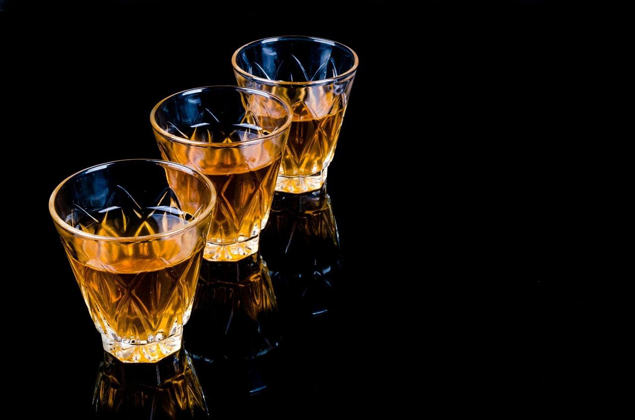 Prolegomeni a una critica della ragion alcolica