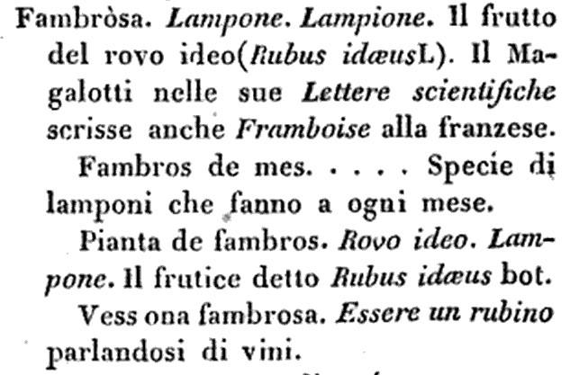 """fambrosa, dal """"vocabolario milanese italiano"""" di Francesco Cherubini, 1840"""