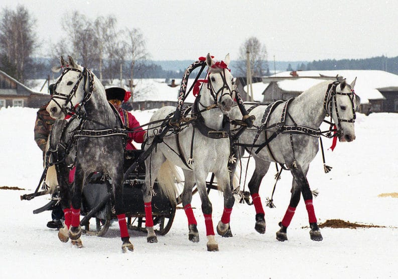 Troika: slitta con tre cavalli
