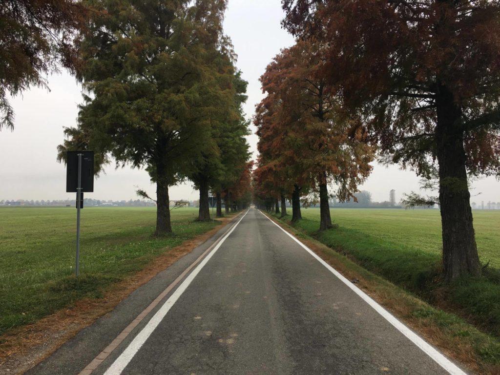 stradale dalle parti di Nosadello