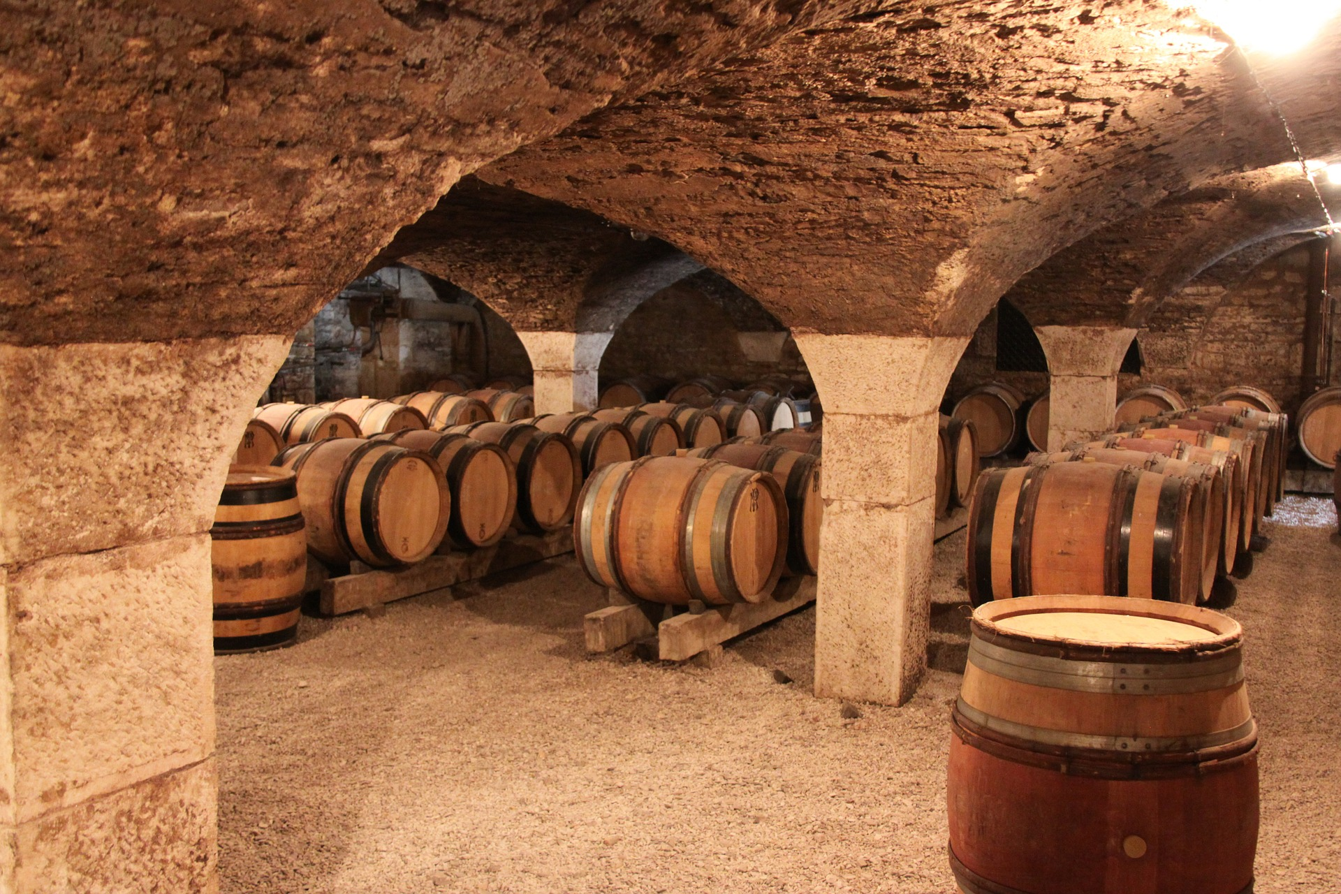 barriques in Borgogna