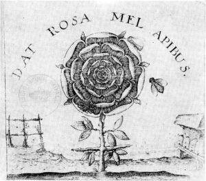 croce sormontata da una rosa, incisione del 1629